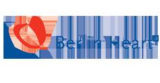 berlin_heart